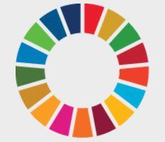 セミナー「国連SDGs採択から3年:世界をつづく社会に向かわせるには?」